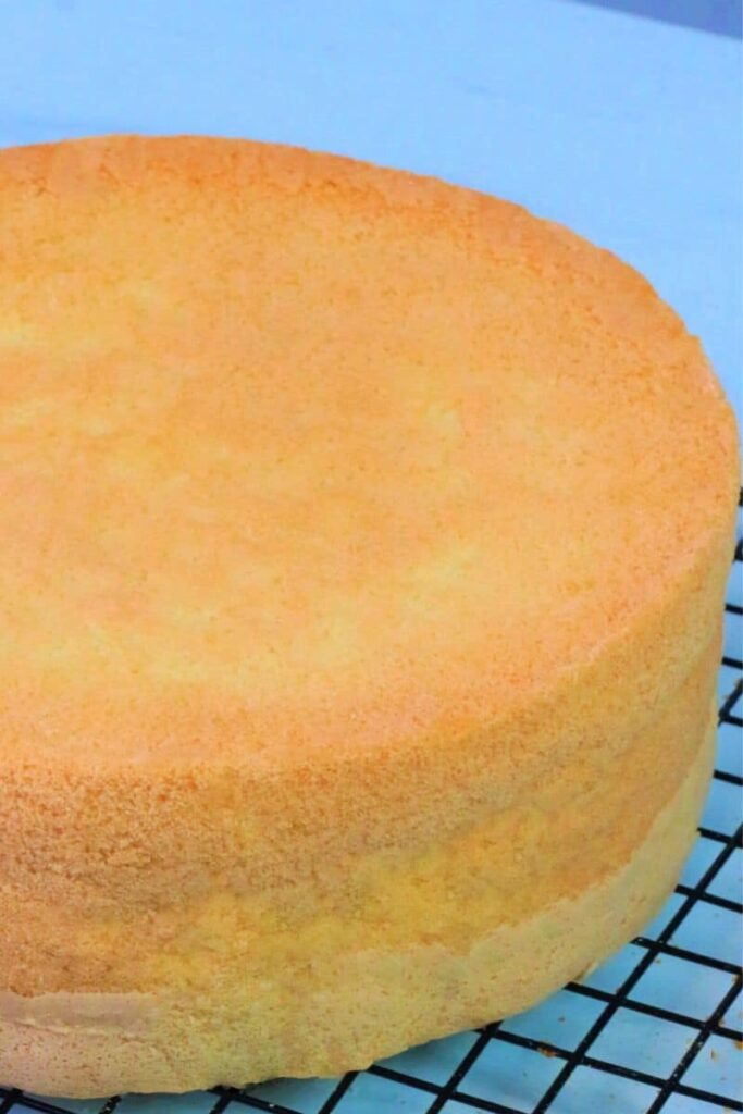Super soft sponge cake out of the oven